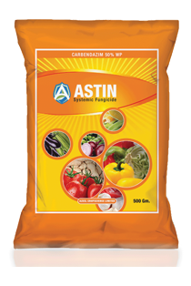 Astin